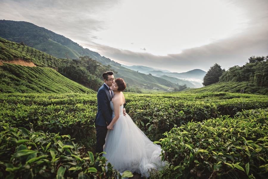 Pre Wedding At Cameron Highlands Momentowedding